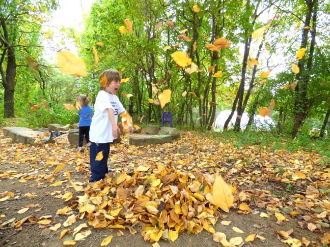 -leaves