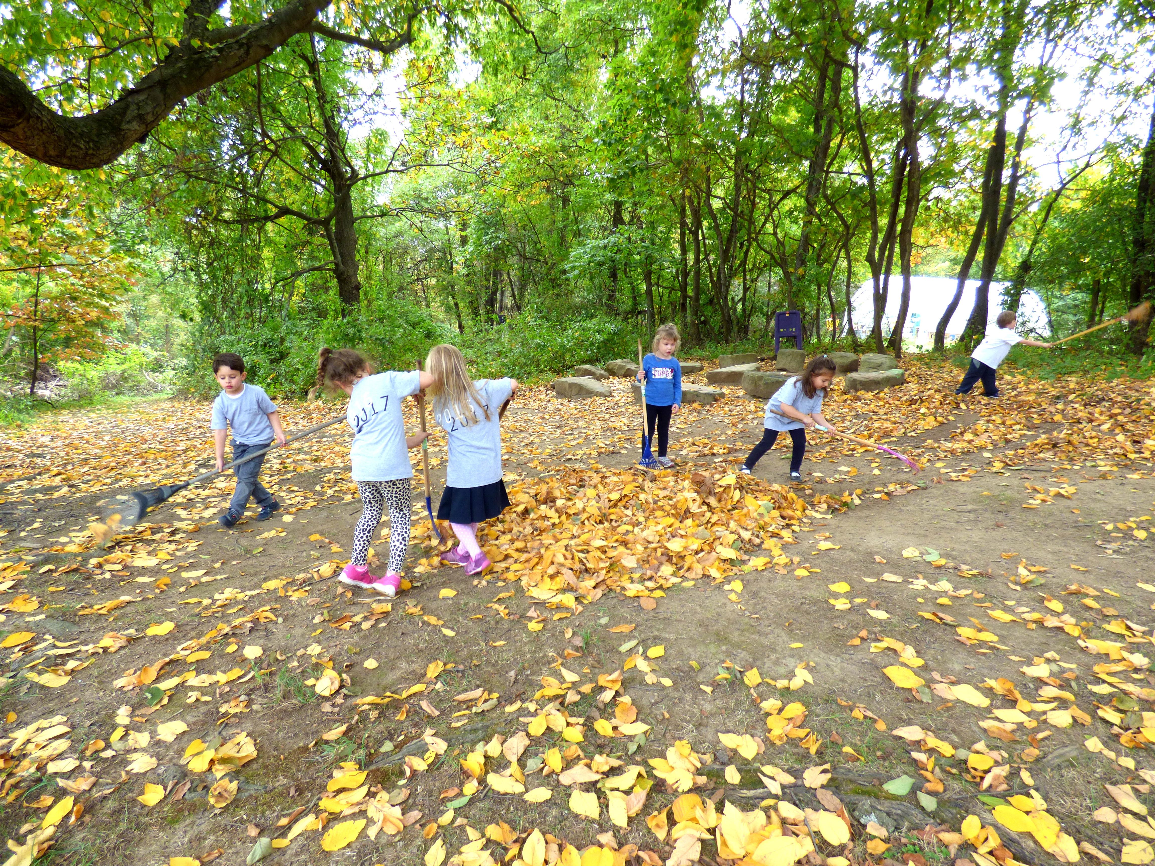 raking-leaves-2